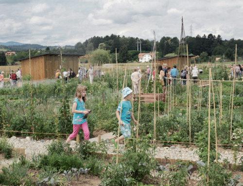 Mesto + narava = urbana agrikultura